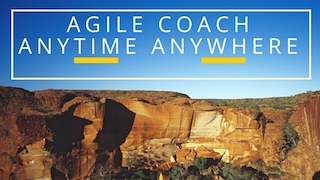 Are you looking for a great Agile Coach?